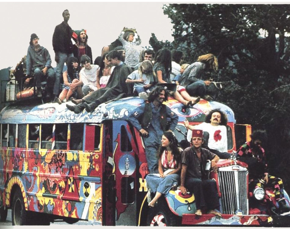 What can i argue about the hippie movement?